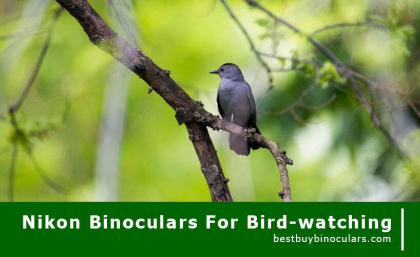 Best Nikon Binoculars for bird watching