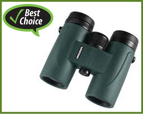 best-binoculars-for-marine