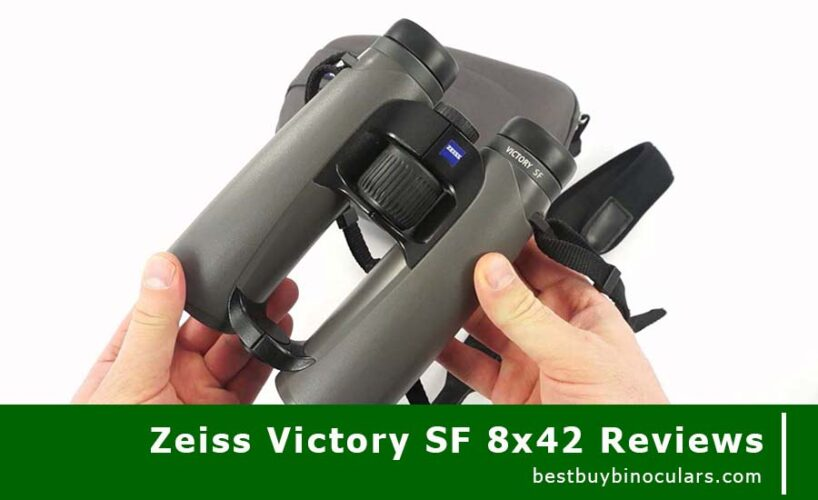 The Most Comprehensive Review On The Zeiss Victory SF 8x42